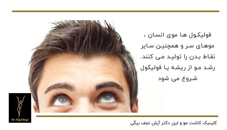 موی سر انسان
